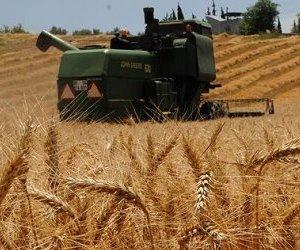 Çiftçilere Ödenecek Tarımsal Destekler Belli ...