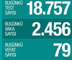 Türkiye`de Can Kaybı 356`ya Yükseldi